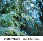 Small photo of On pins and needles hanging frozen droplets of ice after ice rain. Shallow depth of field, abstract background.
