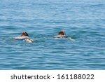 2 men swimming in the sea | Shutterstock . vector #161188022