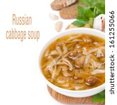 Small photo of bowl of traditional Russian cabbage soup (shchi) with wild mushrooms, isolated on white