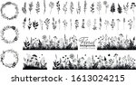 big floral collections of black ...   Shutterstock .eps vector #1613024215
