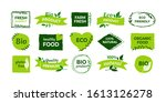 organic logo. vegan product... | Shutterstock .eps vector #1613126278