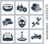 vector isolated spa icons set | Shutterstock .eps vector #161323175