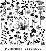 big set of plants and flowers   Shutterstock .eps vector #161353988