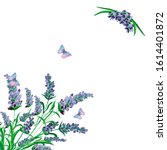 watercolor hand painted nature... | Shutterstock . vector #1614401872
