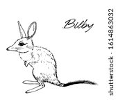 Ute Greater Bilby Poster...