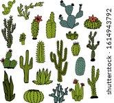 Vector Set Of Bright Cacti ...