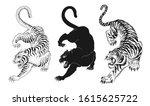 design elements of tiger vector illustrations