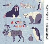Set Of Polar Animals