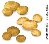 set of different vegetables... | Shutterstock .eps vector #161575862