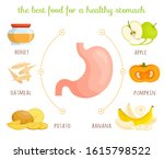 the best food for a healthy... | Shutterstock .eps vector #1615798522