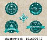 vintage labels set | Shutterstock .eps vector #161600942