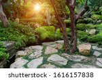 Stone Pathway With Green Grass...