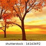 autumn landscape | Shutterstock . vector #16163692