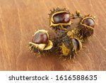 Old Chestnuts With Brown Core...