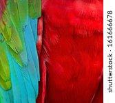 beautiful background of... | Shutterstock . vector #161666678