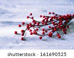 photo of christmas decorations... | Shutterstock . vector #161690525