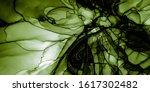Marble Watercolors. Vegetarian...