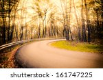 Single Road In The Forest With...
