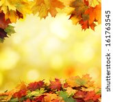 autumn background    Shutterstock . vector #161763545