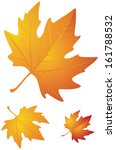 Autumn Leaves Realistic Vector...