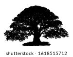 black silhouette tree isolated... | Shutterstock . vector #1618515712