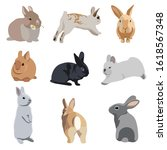 set of realistic flat bunny...   Shutterstock .eps vector #1618567348
