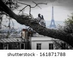 Kiss You In Paris  Two Doves I...