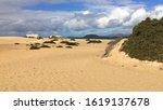 Deserted Beach In Corralejo ...
