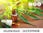 concept of growing hemp for oil ... | Shutterstock . vector #1619249608