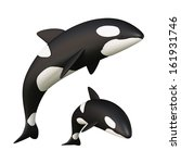 orca whale. | Shutterstock . vector #161931746