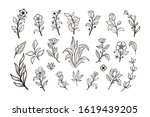 beautiful hand drawn floral...   Shutterstock .eps vector #1619439205