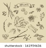 vector background with hand... | Shutterstock .eps vector #161954636