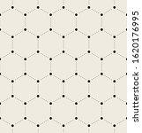 vector seamless pattern. modern ... | Shutterstock .eps vector #1620176995
