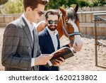 Horse Theme. Businessmen With A ...