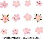 cherry blossom vector... | Shutterstock .eps vector #1620291688