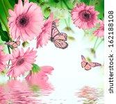 Multi Colored Gerbera Daisies...