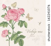vintage vector card with... | Shutterstock .eps vector #162241076