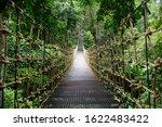 Bridge Rainforest Suspension...