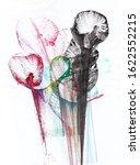 art abstract flowers .hand...   Shutterstock . vector #1622552215