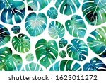 watercolor background with... | Shutterstock .eps vector #1623011272