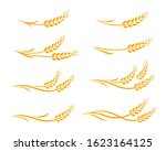 hand drawn decorative wheat... | Shutterstock . vector #1623164125