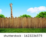 curious neighbor behind... | Shutterstock . vector #1623236575