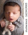newborn baby  15 days old ... | Shutterstock . vector #1623419005