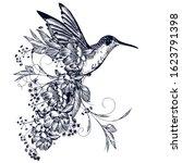 elegant vector hummingbird with ... | Shutterstock .eps vector #1623791398