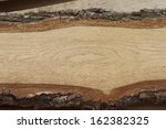 Oak Board With Bark.