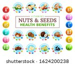 nuts and seeds healthy benefits ... | Shutterstock .eps vector #1624200238