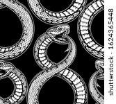vector black and white snake... | Shutterstock .eps vector #1624365448