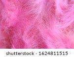 Pink Boa Background Of Purple...