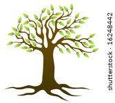 tree vector | Shutterstock .eps vector #16248442