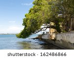 tree leaning over waterfront... | Shutterstock . vector #162486866
